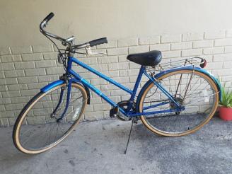 Free Spirit blue bicycle
