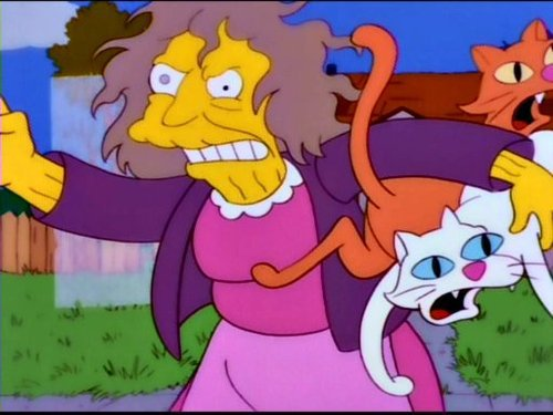 iwannabealady.com crazy cat lady simpsons gray hair