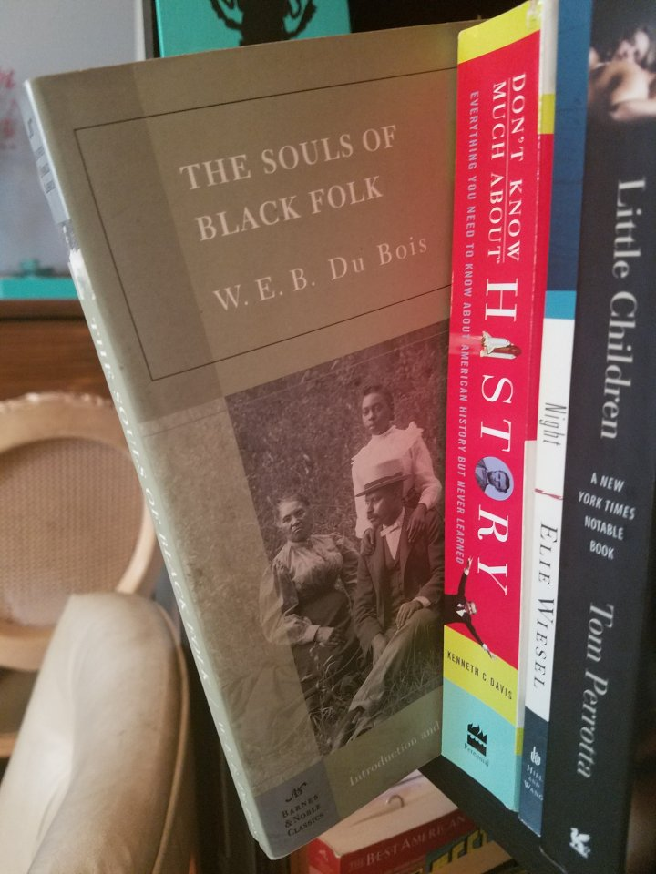 iwannabealady.com book lovers collection choosing a new book lifestyle blogger the souls of black folk w.e.b. du bois