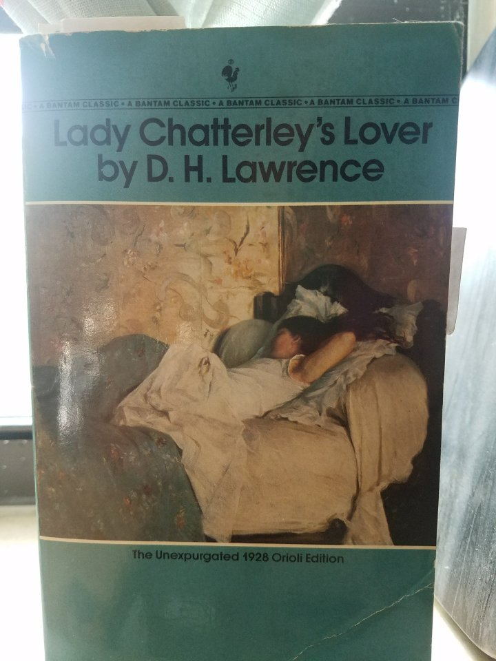 iwannabealady.com book lovers collection choosing a new book lifestyle blogger lady chatterley's lover by D.H. Lawrence