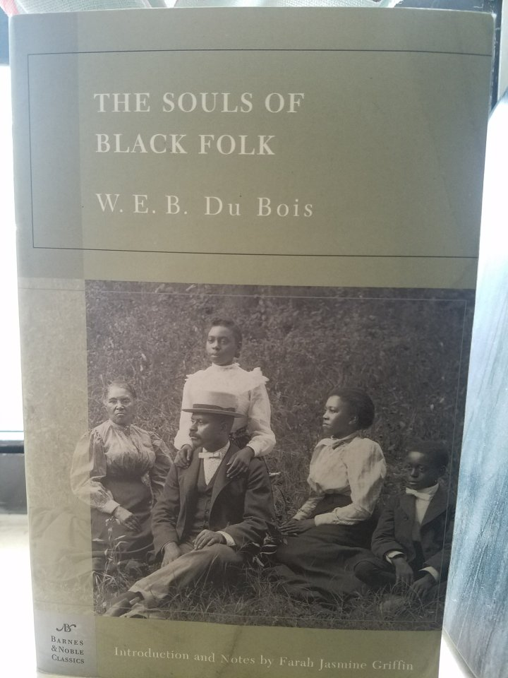 iwannabealady.com book lovers collection choosing a new book lifestyle blogger the souls of black folk