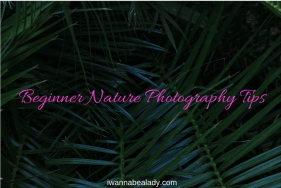 iwannabealady.com beginner nature photography tips