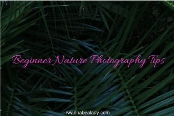 iwannabealady.com beginner nature photography tips