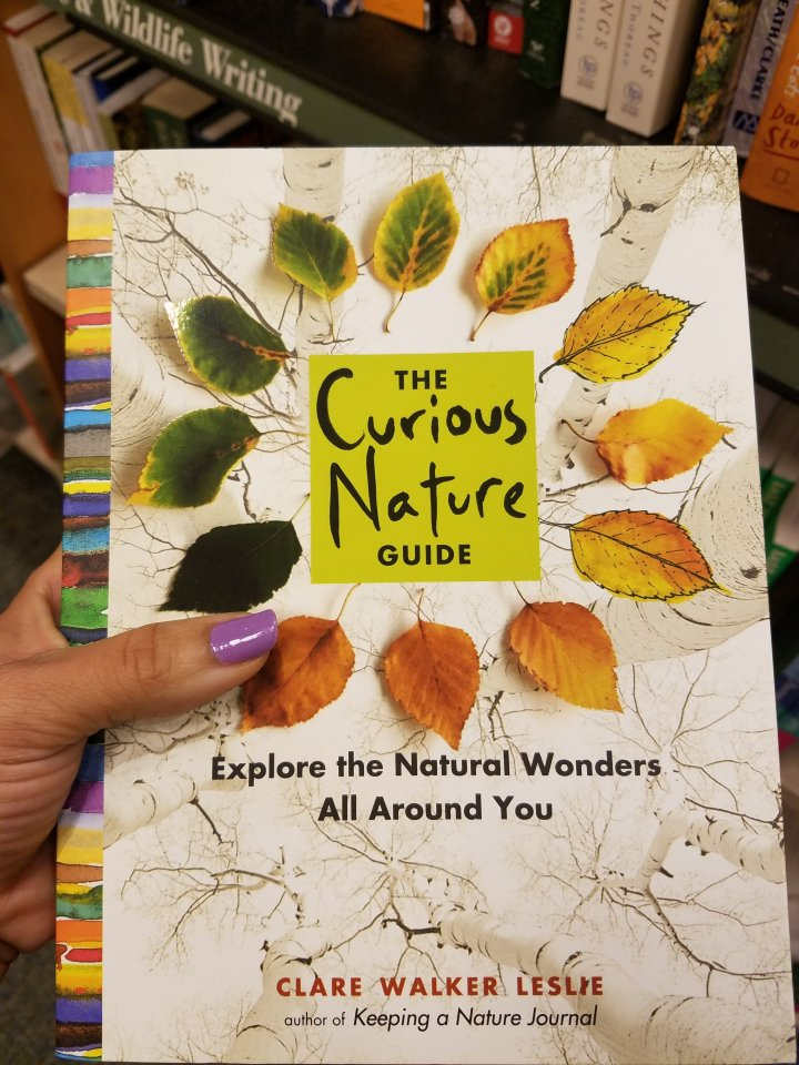 nature journals and books iwannabealady.com