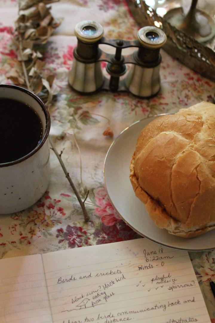 nature journal and morning coffee iwannabealady.com